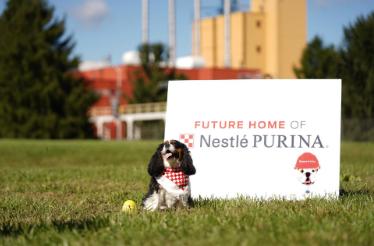 雀巢通过新建一家大型工厂瞄准蓬勃发展的宠物食品市场