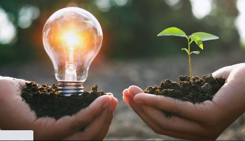为什么1月星峰能源转型库存飙升32.5%