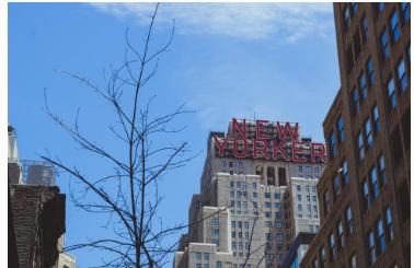 纽约市酒店业的长期前景