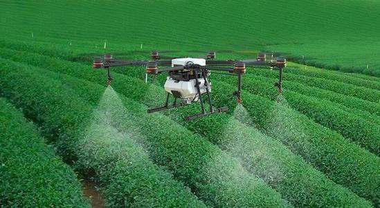 无人机喷洒农药比传统人工喷洒作业效率和农药利用率都要高