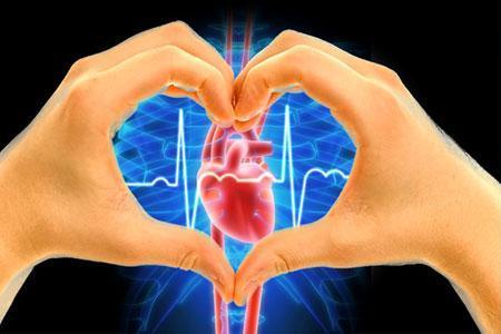 人体生理学实验室将于三月在MIPT上宣布三场关于数字心脏病学的讲座