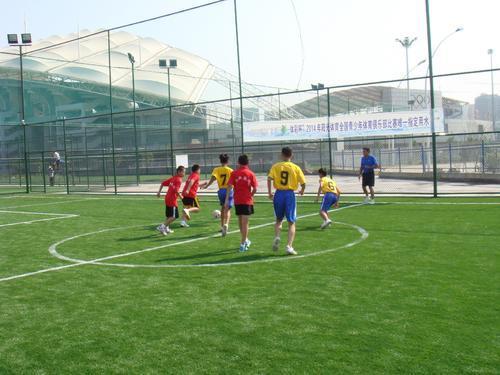 青少年体育竞赛体系的打造要破除赛事壁垒加强与教育部门的沟通协作