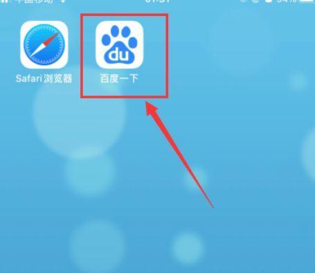 以及在macOS的Safari浏览器中的偏好设置中的密码标签中