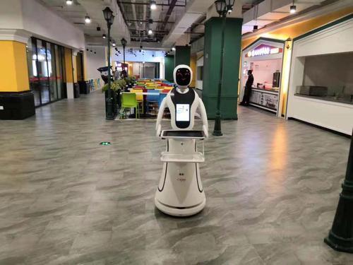 我国的服务机器人市场规模在2023年有望达到751.8亿元