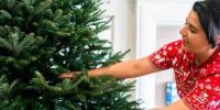 忘记真正的圣诞树换一棵假的