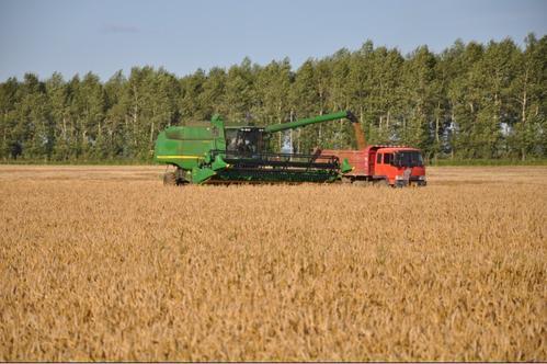 合作研发实施耕播优化水肥精量绿色高产技术