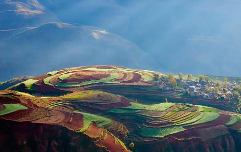 由于种种因素导致云南高原特有鱼类种质资源不断减少