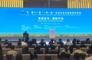 中国人民外交学会协办的高级别非官方国际安全论坛