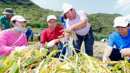 北京联合大学将劳动教育纳入人才培养方案